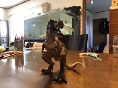 T.Rex front