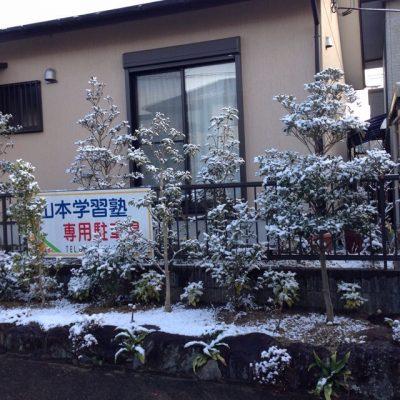2017年1月の雪