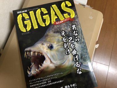 GIGAS vol.3