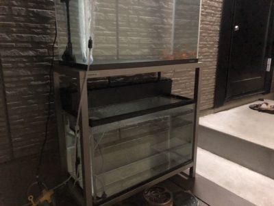 夜の屋外水槽