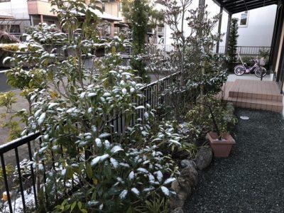 年明けの雪2