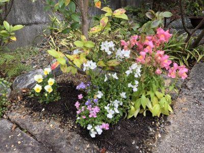 子どもの好きなパステルカラーのお花たち